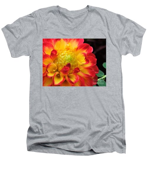 Macro Dahlia Men's V-Neck T-Shirt