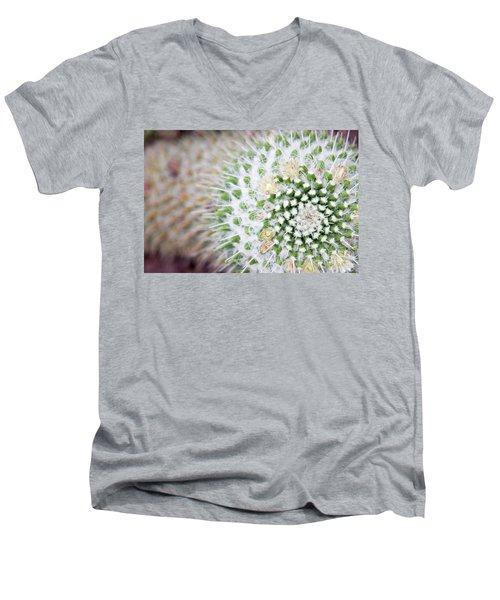 Madrid Botanical Garden 1 Men's V-Neck T-Shirt by Ana Mireles
