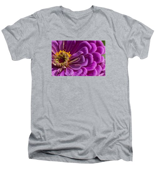 Magenta Zinnia Men's V-Neck T-Shirt