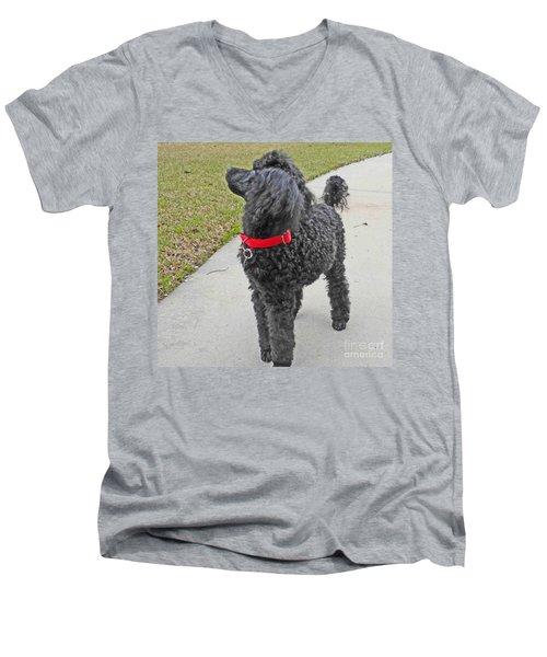 Maggie On Bird Watch Men's V-Neck T-Shirt