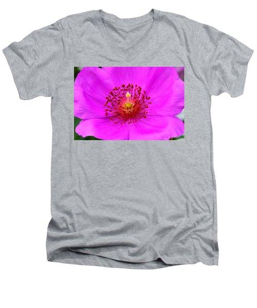 Magic Magenta - Calandrinia Men's V-Neck T-Shirt