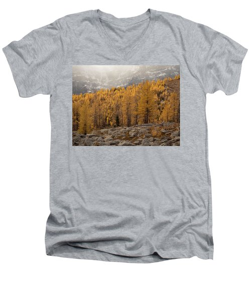 Magnificent Fall Men's V-Neck T-Shirt