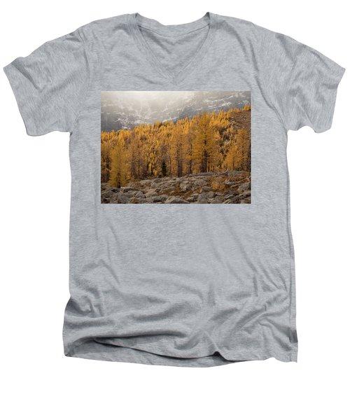 Magnificent Fall Men's V-Neck T-Shirt