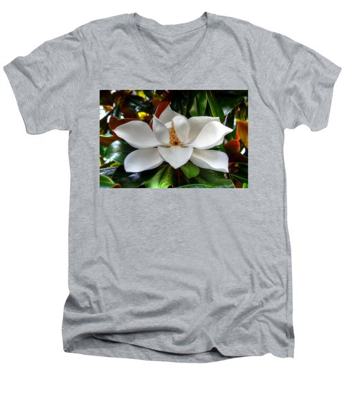 Magnolia Bloom Men's V-Neck T-Shirt by Ronda Ryan