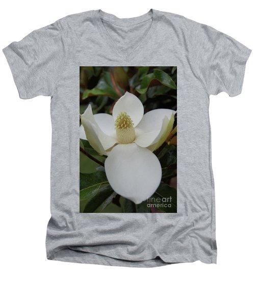Magnolia Blossom 6 Men's V-Neck T-Shirt