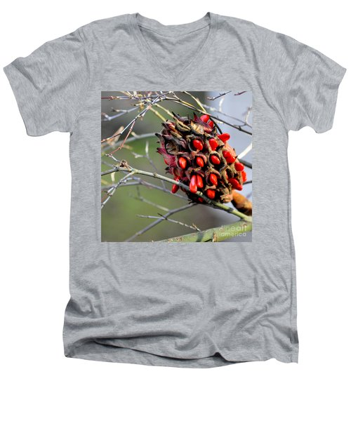 Magnolia Seedhead Men's V-Neck T-Shirt by Tanya Searcy