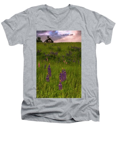 Maine Lupines And Home After Rain And Storm Men's V-Neck T-Shirt by Ranjay Mitra