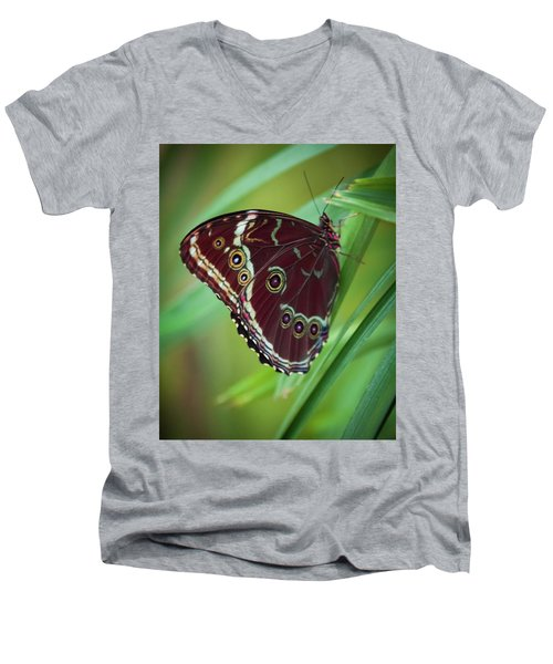 Majesty Of Nature Men's V-Neck T-Shirt by Karen Wiles