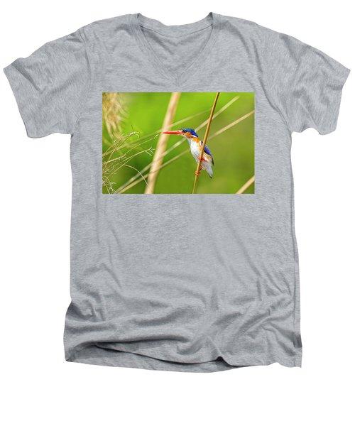 Malachite Kingfisher Men's V-Neck T-Shirt