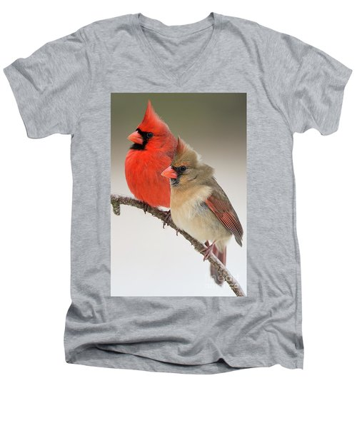 Male And Female Northern Cardinals On Pine Branch Men's V-Neck T-Shirt