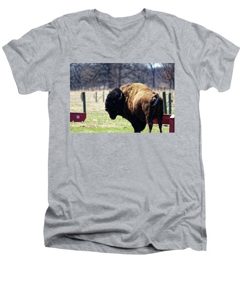 Male Bison Men's V-Neck T-Shirt