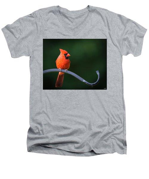 Male Cardinal At The Feeder Men's V-Neck T-Shirt