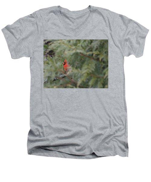 Male Cardinal Seeking Shelter Men's V-Neck T-Shirt