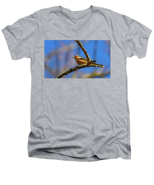Male Common Chaffinch Bird, Fringilla Coelebs Men's V-Neck T-Shirt
