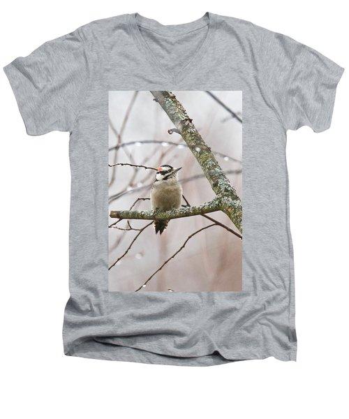 Male Downey Woodpecker Men's V-Neck T-Shirt by Michael Peychich