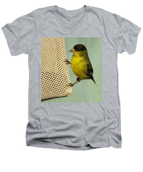 Male Goldfinch On Sock Feeder Men's V-Neck T-Shirt