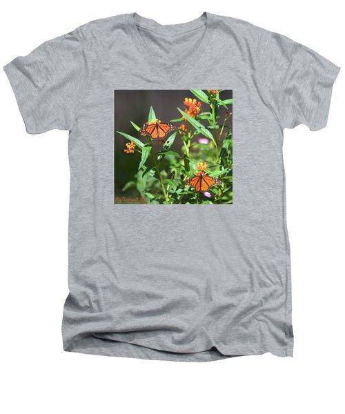 Male Monarch Butterflies Men's V-Neck T-Shirt