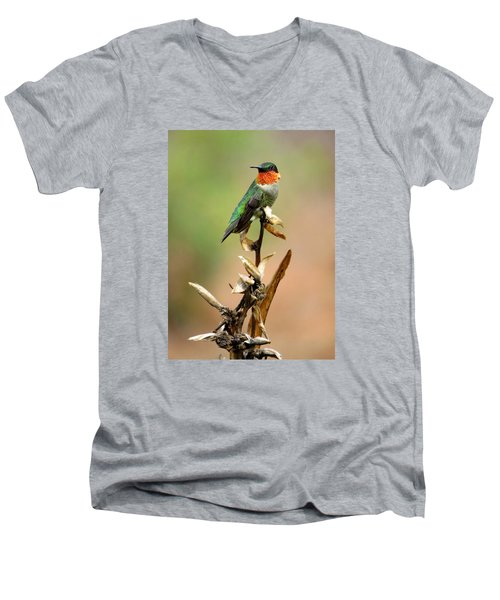 Men's V-Neck T-Shirt featuring the photograph Male Ruby Throat Hummingbird by Phyllis Beiser