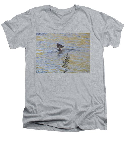 Mallard And The Branch Men's V-Neck T-Shirt