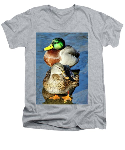 Mallard Couple Men's V-Neck T-Shirt