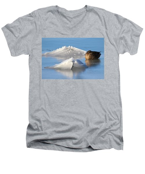 Mallard Duck Mount Sinai New York Men's V-Neck T-Shirt by Bob Savage