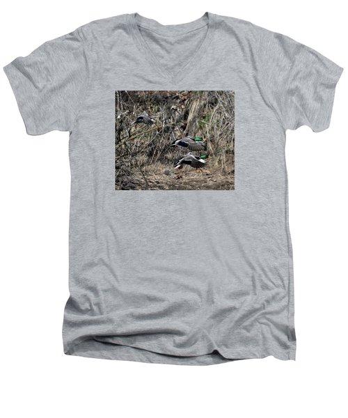 Mallard Ducks 1 Men's V-Neck T-Shirt