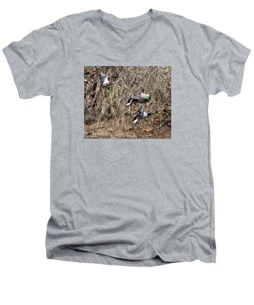 Mallard Ducks 2 Men's V-Neck T-Shirt by David Lester