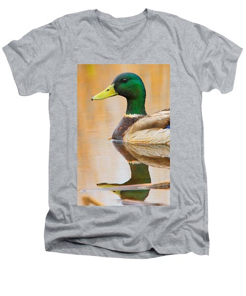 Mallard Mirror Men's V-Neck T-Shirt