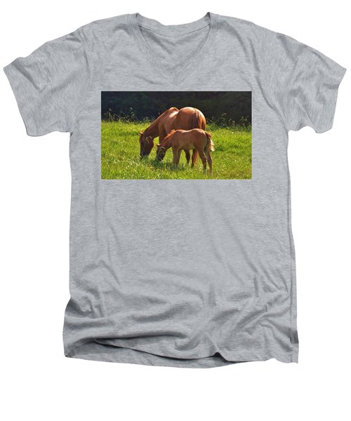 Mama And Baby Men's V-Neck T-Shirt