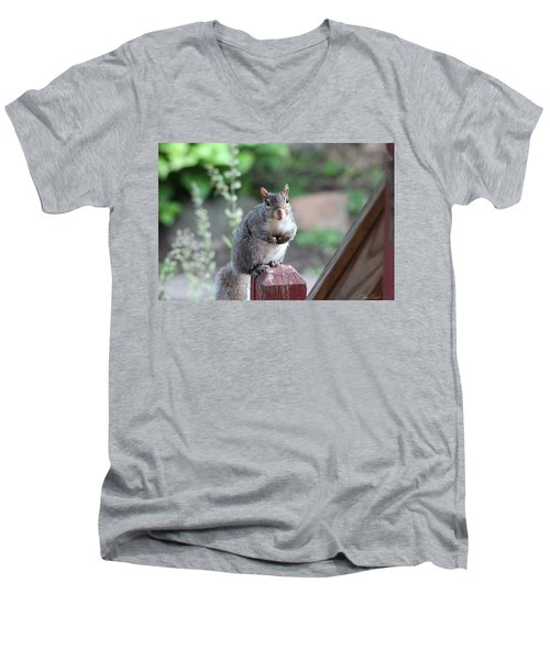 Mama Squirrel Men's V-Neck T-Shirt