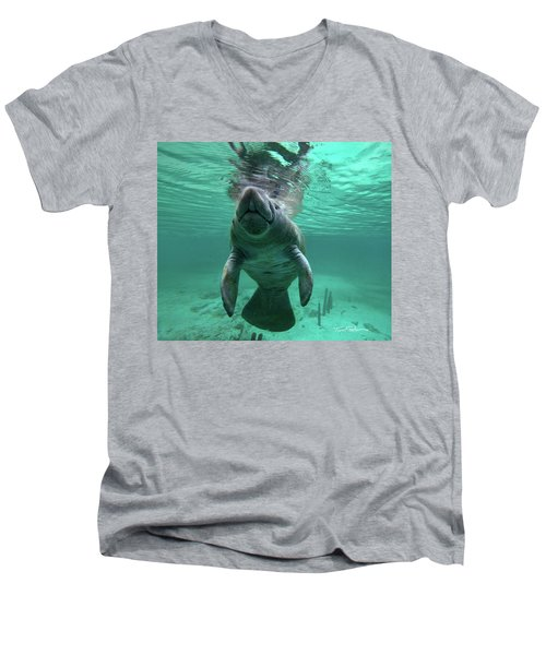 Manatee Breathing Men's V-Neck T-Shirt