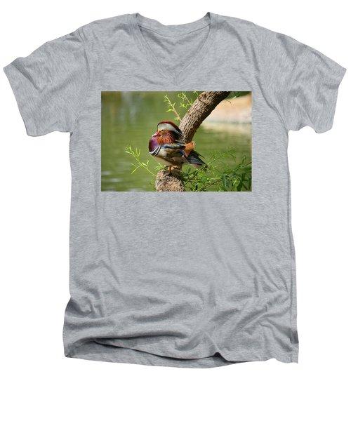 Mandarin Duck On Tree Men's V-Neck T-Shirt