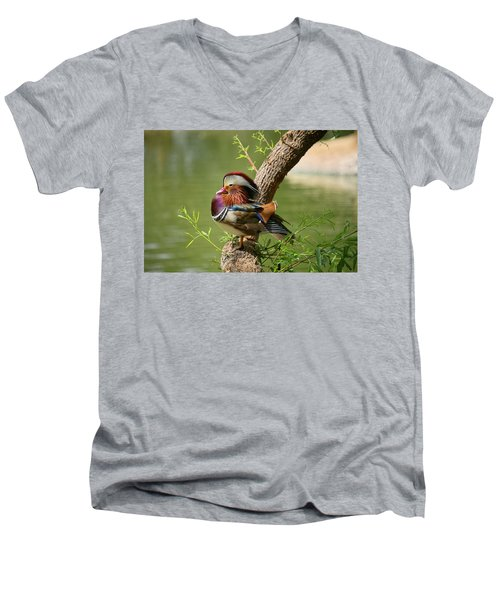 Mandarin Duck On Tree Men's V-Neck T-Shirt