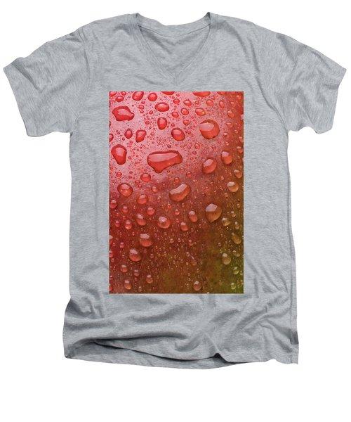 Mango Skin Men's V-Neck T-Shirt by Steve Gadomski