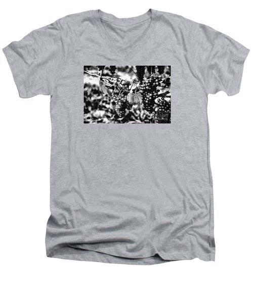 Men's V-Neck T-Shirt featuring the photograph Many Grapes by Rick Bragan