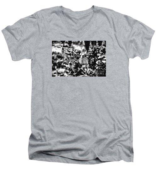 Many Grapes Men's V-Neck T-Shirt by Rick Bragan