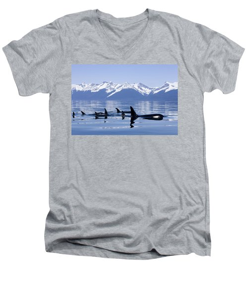 Many Orca Whales Men's V-Neck T-Shirt