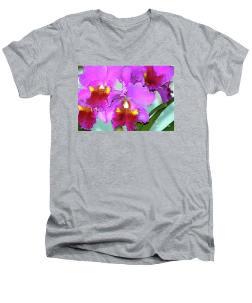 Many Purple Orchids Men's V-Neck T-Shirt