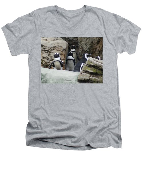 Men's V-Neck T-Shirt featuring the photograph March Of The Penguins by B Wayne Mullins