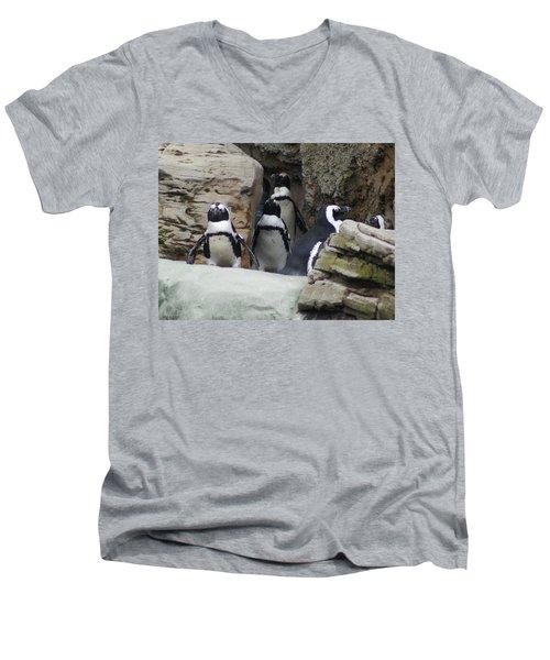 March Of The Penguins Men's V-Neck T-Shirt by B Wayne Mullins