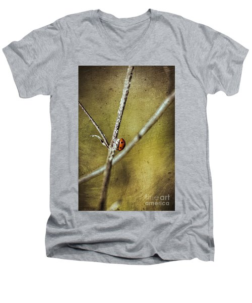 Marienkaefer - Ladybird Men's V-Neck T-Shirt