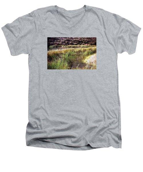 Marine Headlands Pond And Flowers Men's V-Neck T-Shirt by Ted Pollard