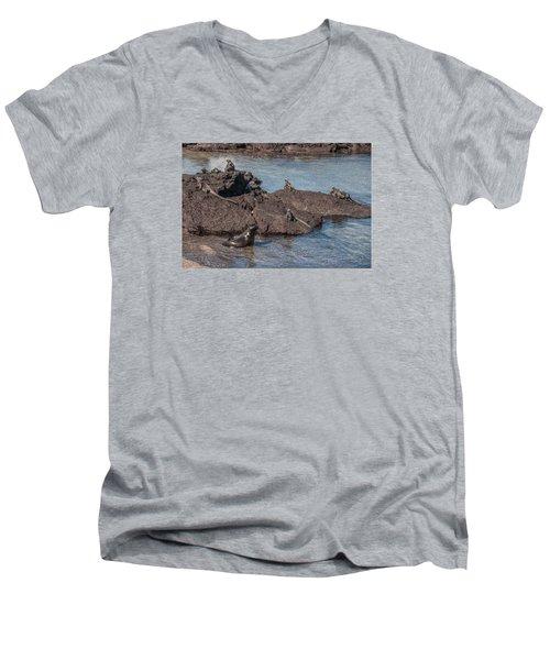 Marine Iguanas And Sealion Pup At Punta Espinoza Fernandina Island Galapagos Islands Men's V-Neck T-Shirt