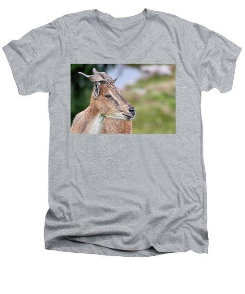 Markhor Men's V-Neck T-Shirt