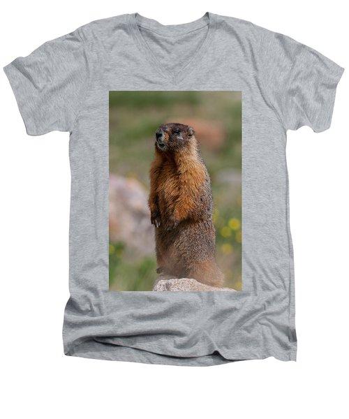 Men's V-Neck T-Shirt featuring the photograph Marmot by Gary Lengyel