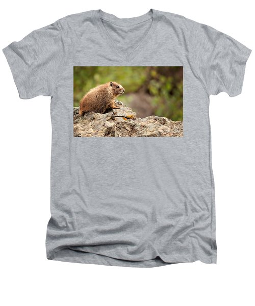 Marmot Men's V-Neck T-Shirt by Lana Trussell
