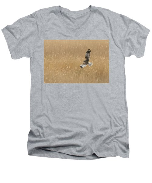 Marsh Harrier Men's V-Neck T-Shirt