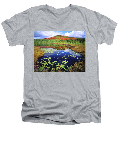 Marsh Pond Men's V-Neck T-Shirt