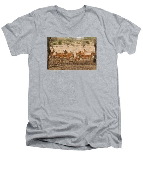 Master Of His Domain Men's V-Neck T-Shirt by Gary Hall