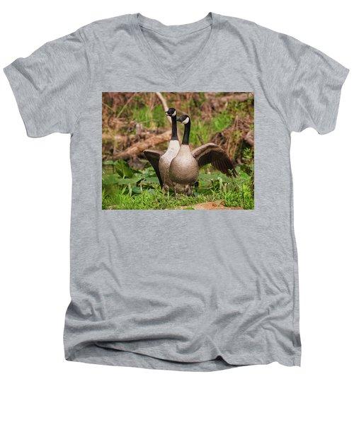 Mating Pair Guarding The Nest Men's V-Neck T-Shirt
